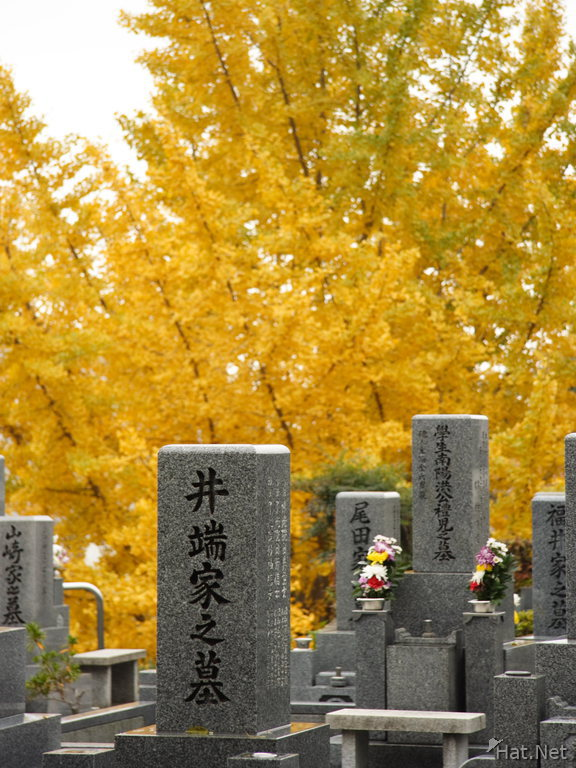 the autumn of tombs