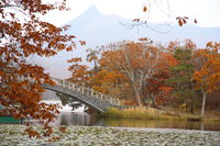 bridge of onuma