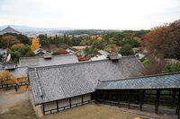 view--nara - stairs from nigatsu-do hall
