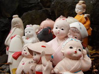 assorted ceramic dolls