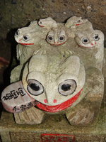 toads with a million yen