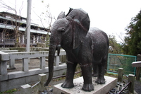 elephant of kompira shrine
