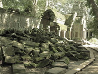 view--ta prohm Siem Reap, South East Asia, Cambodia, Asia