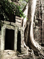 ta prohm doorway Siem Reap, South East Asia, Cambodia, Asia