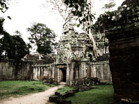 ta prohm temple Siem Reap, South East Asia, Cambodia, Asia