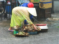 drowning crabs Hoi An, South East Asia, Vietnam, Asia