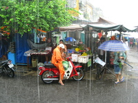 tropical fruit in rainy days Hoi An, South East Asia, Vietnam, Asia