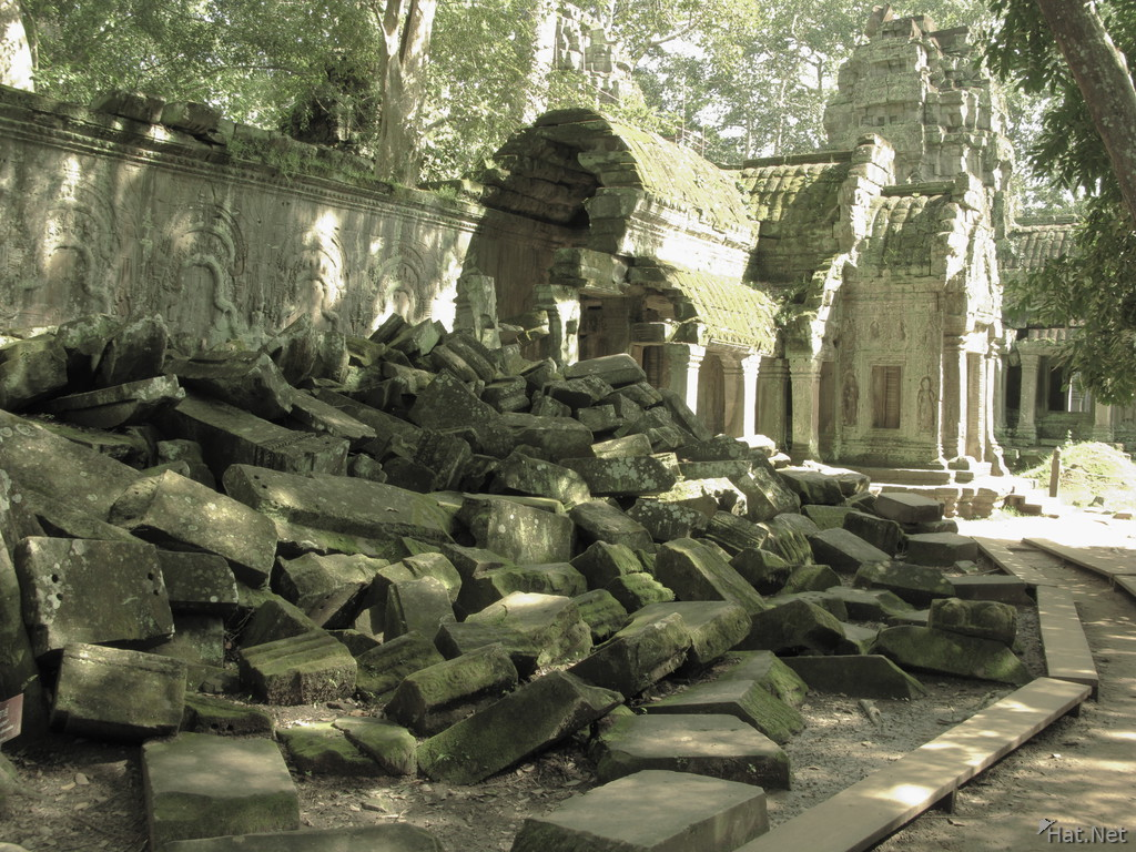 view--ta prohm