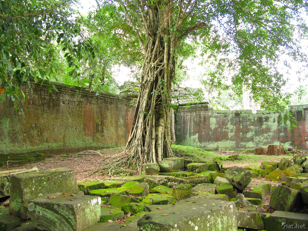courtyard of ta prohm