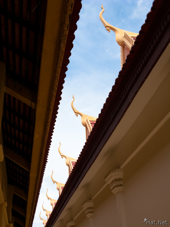 view--palace roof