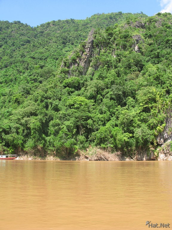 virgin forest of laos