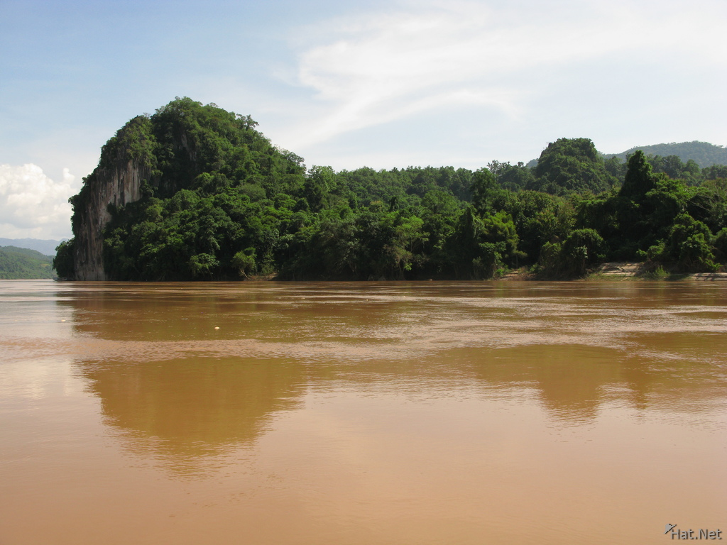 forest of mekong river
