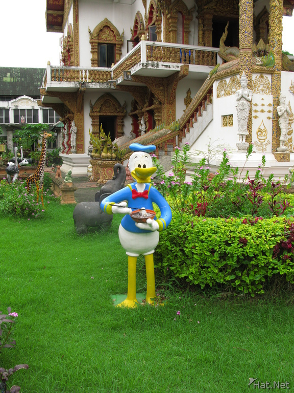 donal duck in buddhist temple