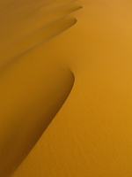 20101029132519_view--dune_wave