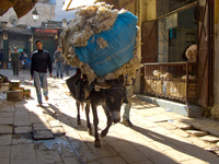 donkey carrying cotton pack Fez, Imperial City, Morocco, Africa