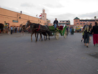 horse cart in marrakech Marrakech, Imperial City, Morocco, Africa