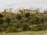 volubilis ruins Meknes, Moulay Idriss, Imperial City, Morocco, Africa