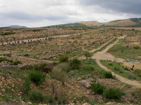 volubilis overview Meknes, Moulay Idriss, Imperial City, Morocco, Africa