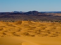 20101029132806_east_of_sand_dune