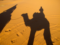 20101028072541_shadow_of_camel_riders
