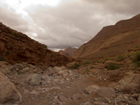 valley under overcast sky La Festival, Todra Gorge, Morocco, Africa