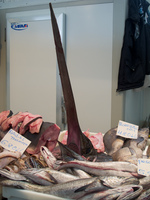 sword fish in cadiz market Cadiz, Seville, Andalucia, Spain, Europe