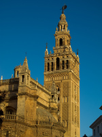 seville cathedral minaret Seville, El Rocio, Andalucia, Spain, Europe