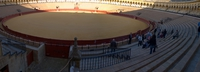 seville bull fighting ring Seville, Andalucia, Spain, Europe