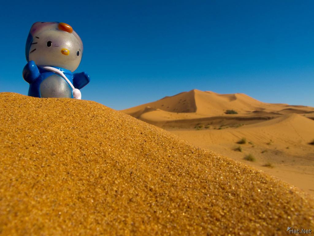 view--hello kitty in erg chebbi