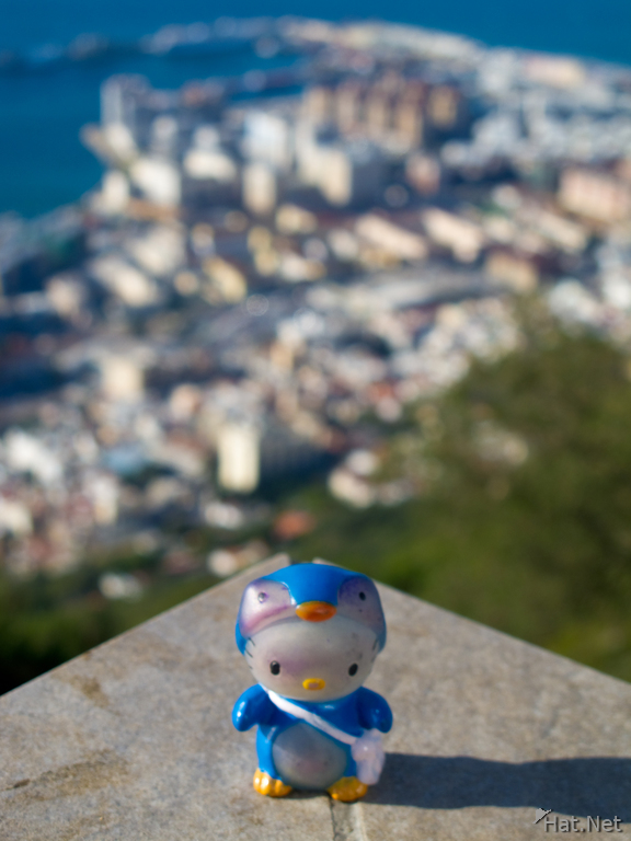 view--hello kitty in gibraltar
