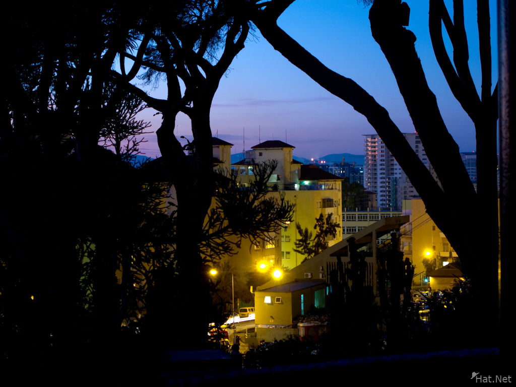 view--night in alameda botanic gardens of gibraltar