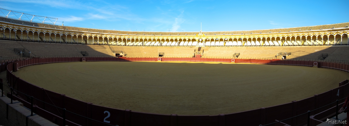 view--seville bull fighting ring