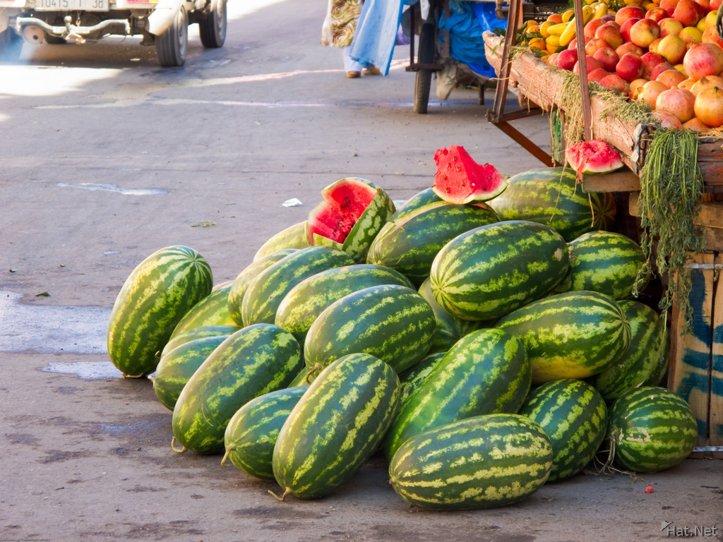 view--watermellons of palais badii