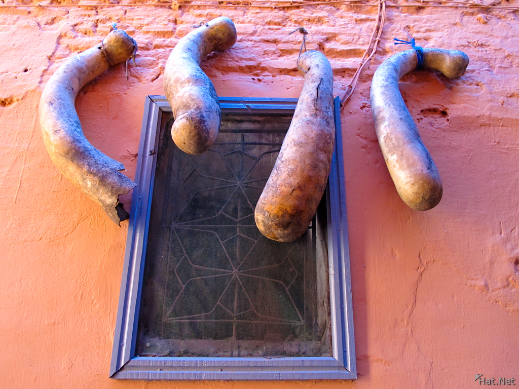 view--marrakech gourds