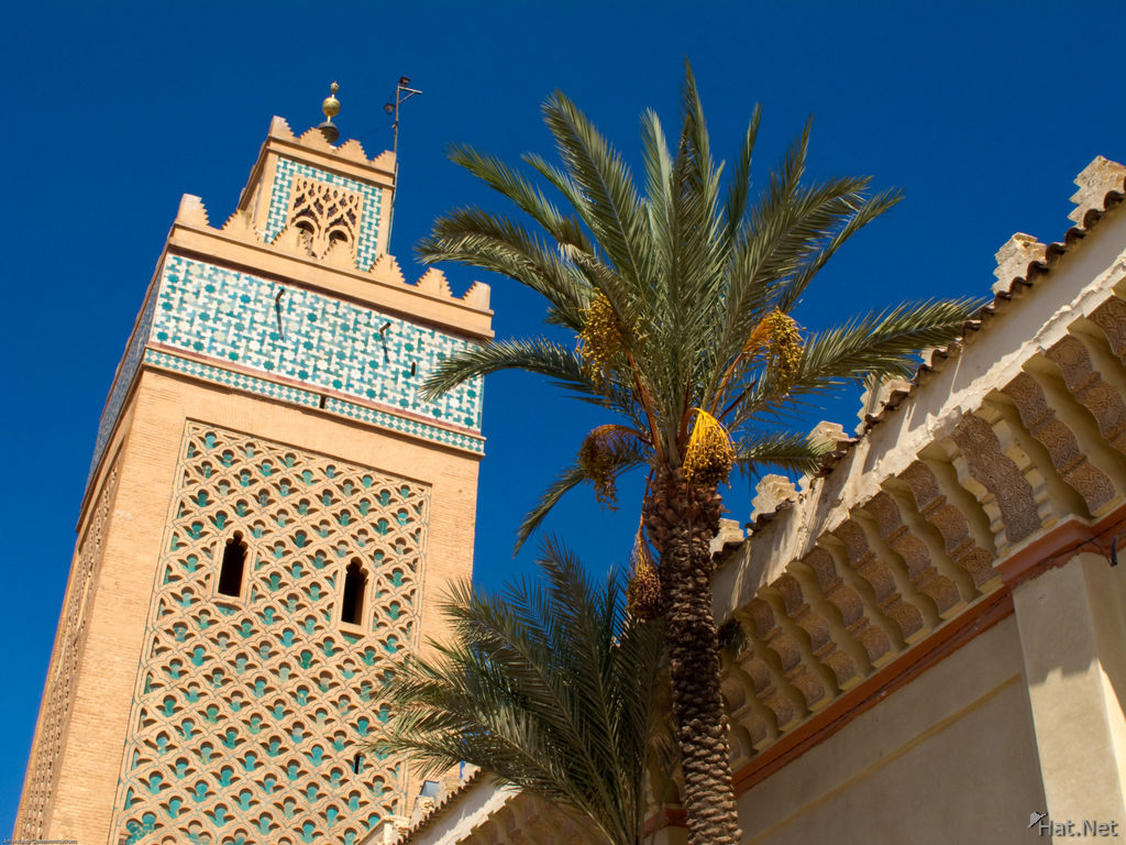 kasbah mosque and palm tree