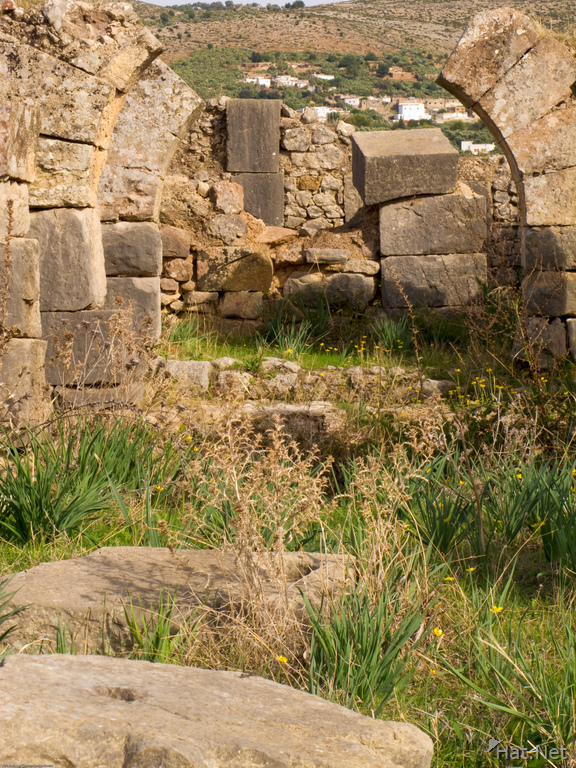 volubilis  bathhouse