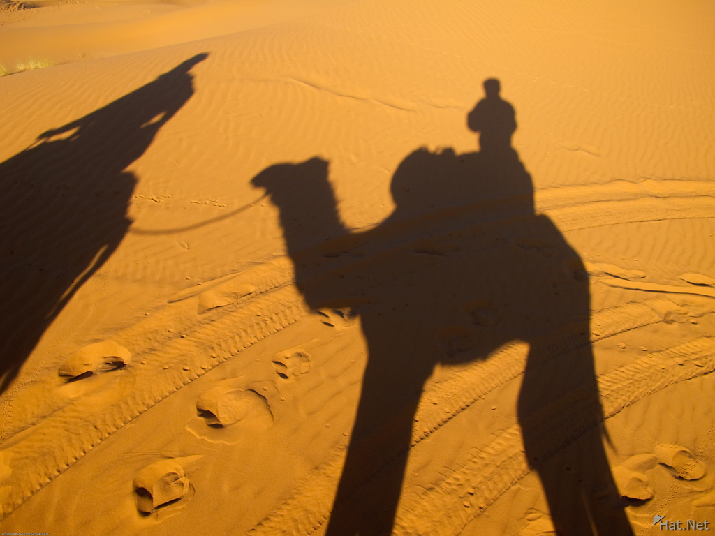 shadow of camel riders