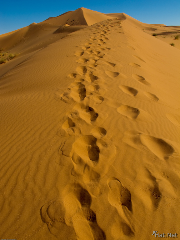 erg chebbi footprints