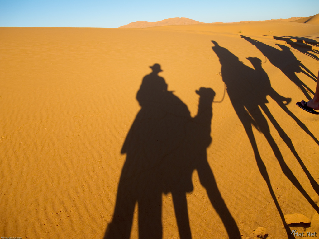 shadows of camel riders