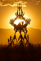 20120830185334_Desert_flower_sunset