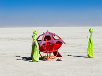 UFO landing with green cats Black Rock City,  Nevada,  United States, North America