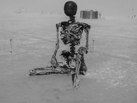 skeleton in desert Black Rock City,  Nevada,  United States, North America